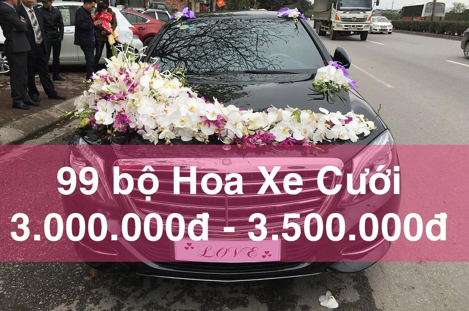 99 bộ hoa xe cưới đẹp