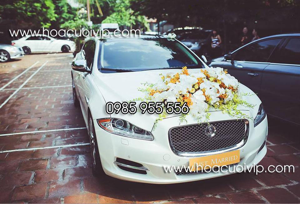 xe cưới Jaguartrắng 2017