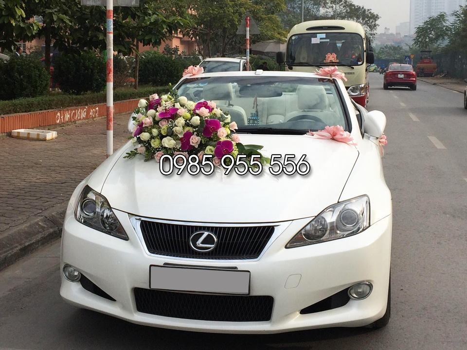thuê xe cưới lexus is250c mui trần