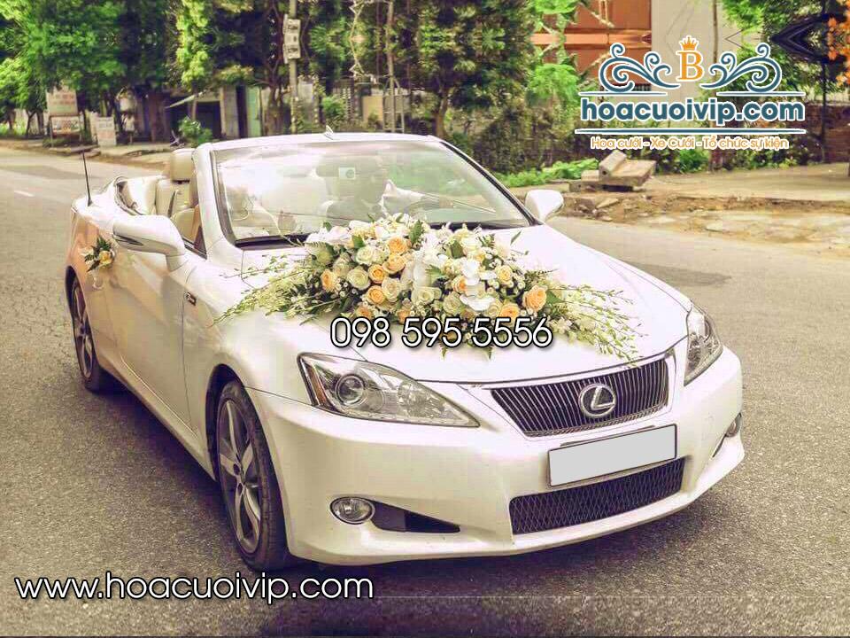 thuê xe cưới lexus is250 mui trần trắng