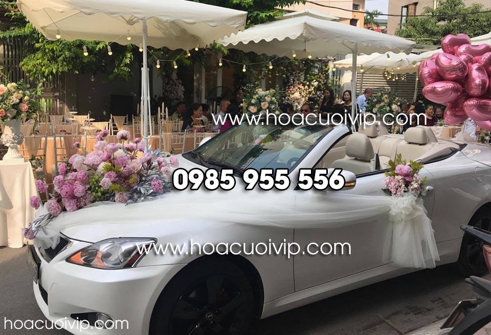 xe cưới lexus í250c mui trần