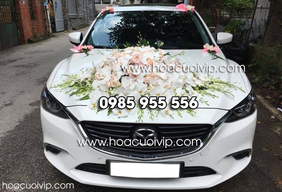 xe cưới mazda 6 trắng