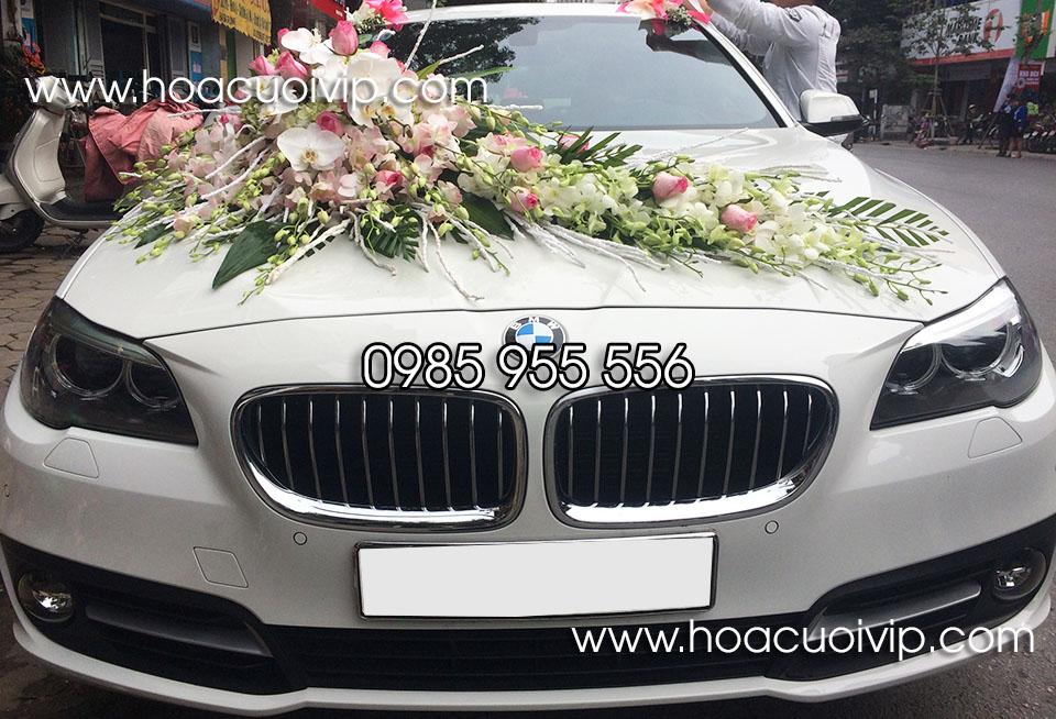 thuê xe cưới bmw 520i trắng