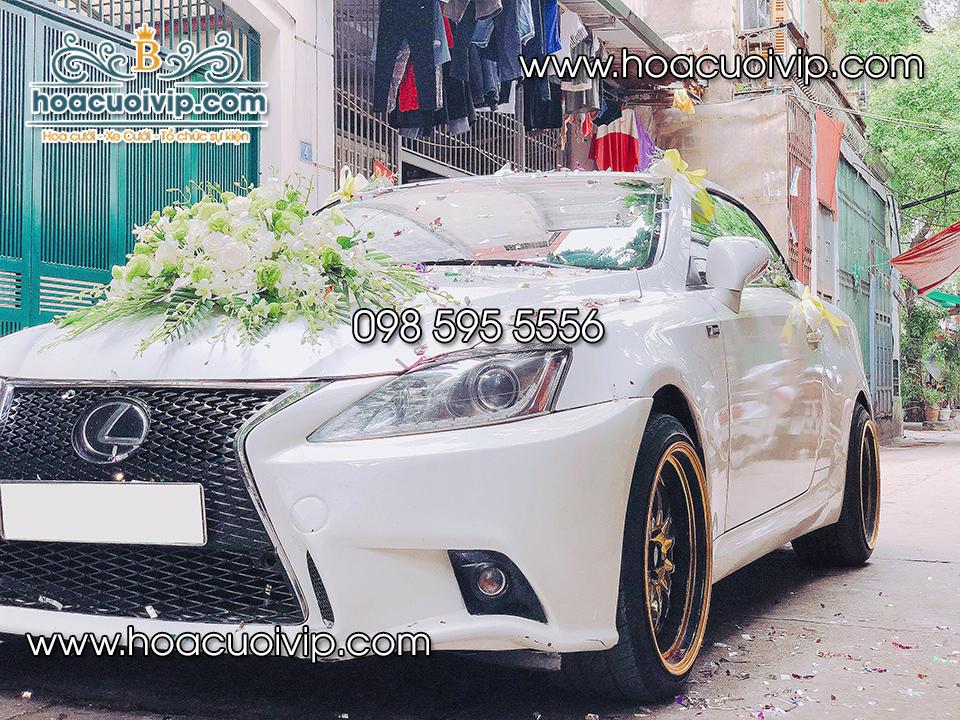 thuê xe cưới lexus is250c sedan