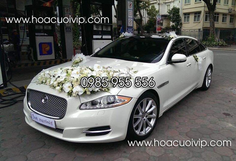 thuê xe cưới jaguar xjl